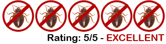 Kill Bed Bugs