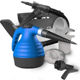 Professional Bed Bug Steamer Review